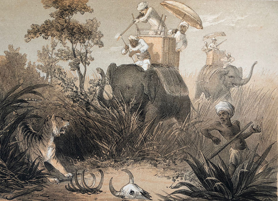Each story is accompanied by a lithograph. Here we can see the conclusion of the tiger hunt.
