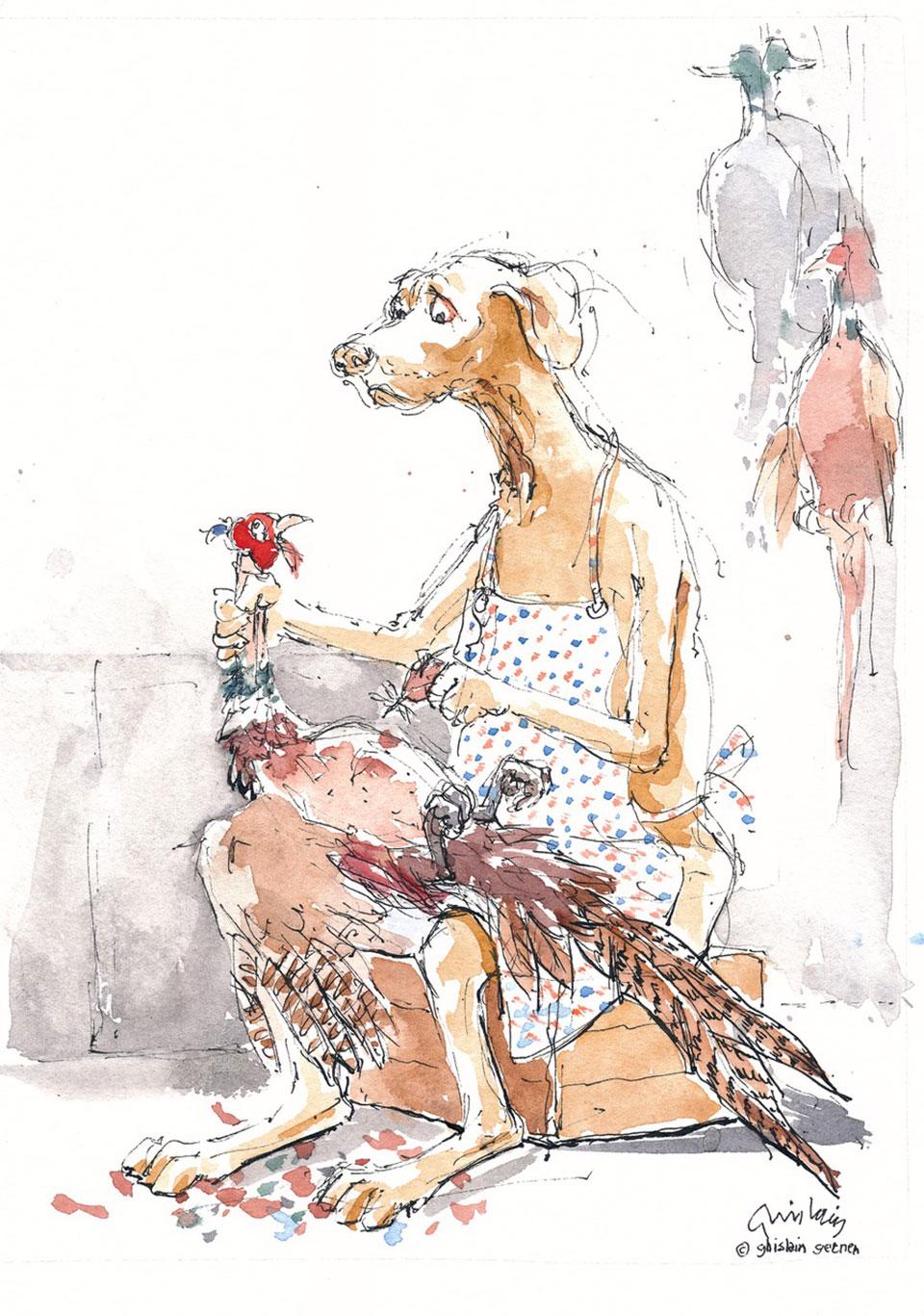 Vesper, the visla, getting to work on pheasant plucking.